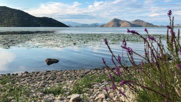 Traumhafter Blick über den Skadarsko jezero