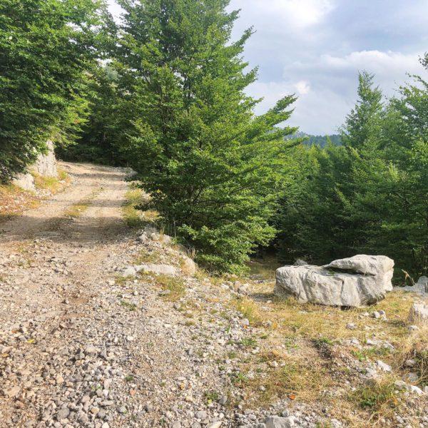 Weg zum Velika-Pass in Montenegro in der Bergwelt der Kučka krajina