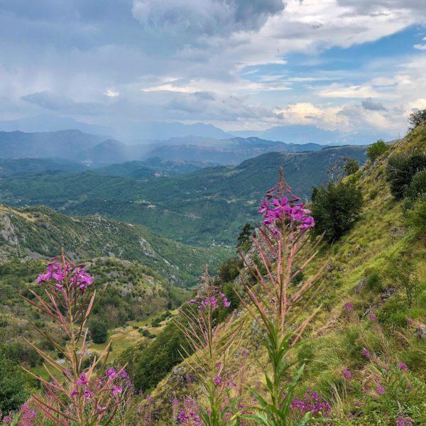 Wunderbare Bergwelt Montenegros mit intakter Flora und Fauna