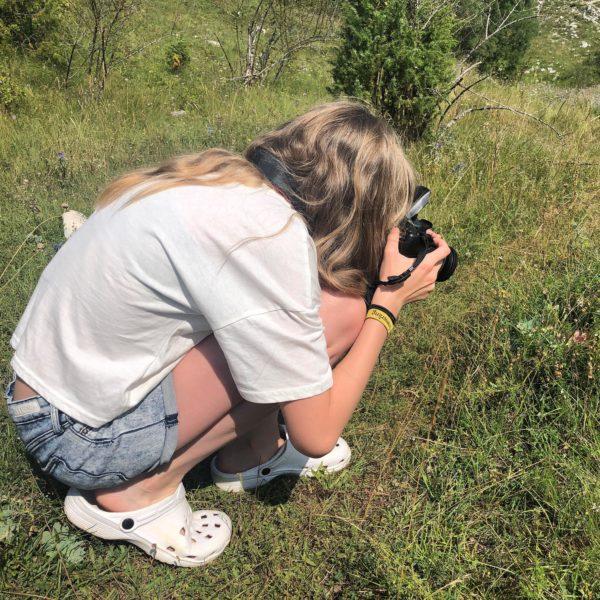 Fokus auf die kleinen Dinge der Natur in den Bergen von Montenegro