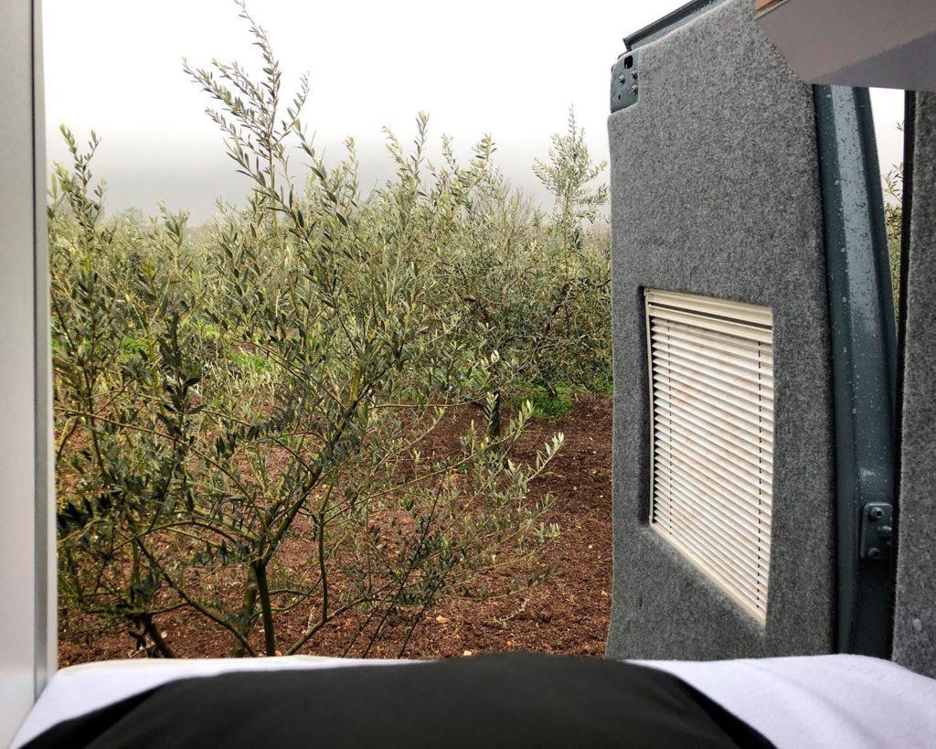 Blick aus dem ATACAMA 4x4S auf einen Olivenhain